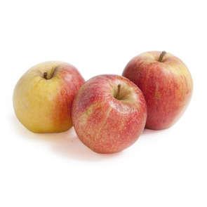 Pommes bicolores - Cat. 2 - Cal. 115/135 - Biologique