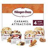 Häagen-Dazs HAAGEN DAZS Caramel attraction - Crème glacée - salted caram... - 321g