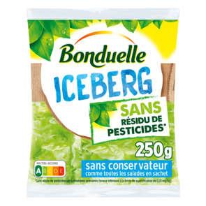 Iceberg - Sans résidu de pesticides