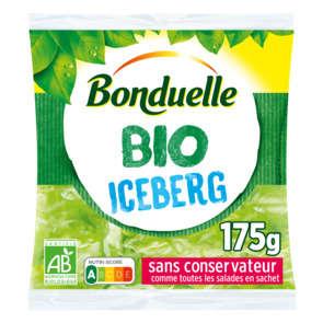 Salade Iceberg - Biologique