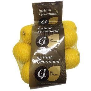 Citron - Cat. 1 - Cal. 4/5 - Espagne