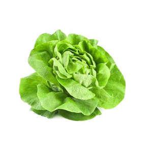 Salade cœur de laitue - Cat. 1