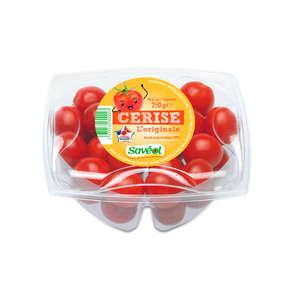Tomates cerises - Cat. 1 - France