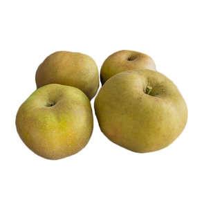 Pommes Canada - Cat.2 - Cal. 115/135 - Biologique