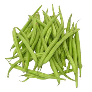 Haricots verts - Cat. 1