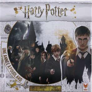 Harry Potter la quête des Horcruxes
