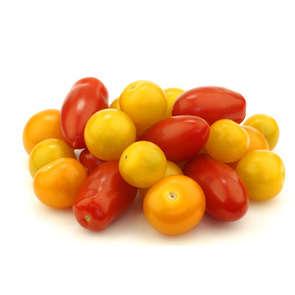 Tomates Méli-mélo - Cat. 1