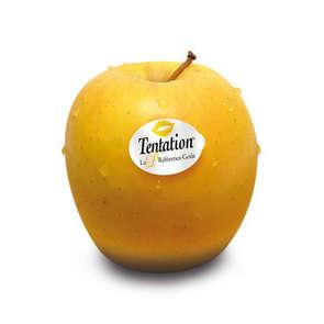 Pommes - Tentation - Cal. 170+