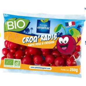 Croq'Radis - Radis ronds à croquer - Cat.2 - Biologique - France