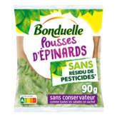 Bonduelle BONDUELLE Pousses d'épinards - Sans résidu de pesticides - 90g