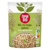 Céréal Bio Blé Riz Rouge Quinoa - Au Naturel - Biologique - 220g